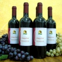 Vino-primitivo-di-Manduria-AMastronardi-1024x766